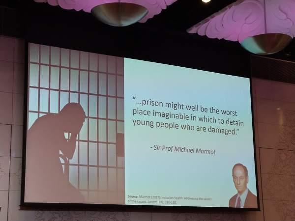 Sir Prof Michael Marmot Quote